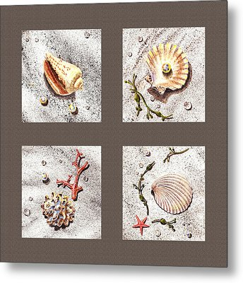Seashell Collection IIi Metal Print by Irina Sztukowski