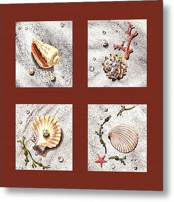 Seashell Collection Iv Metal Print by Irina Sztukowski