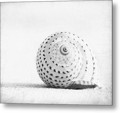 Seashell Voices Metal Print