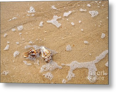 Seashells And Bubbles Metal Print by Kaye Menner