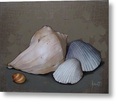 Seashells Metal Print by Clinton Hobart