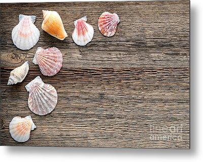 Seashells On Wood Metal Print by Olivier Le Queinec