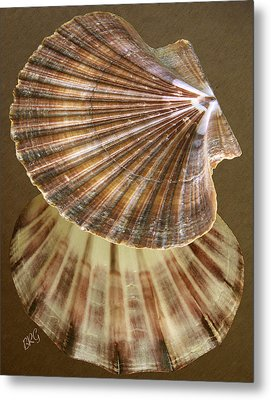 Seashells Spectacular No 54 Metal Print by Ben and Raisa Gertsberg