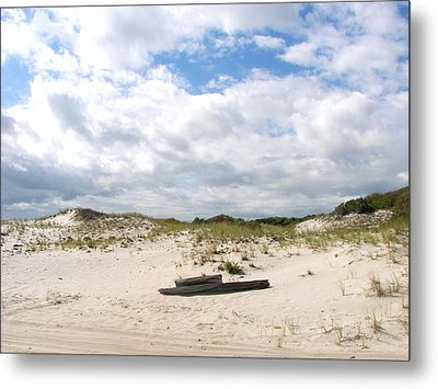 Metal Print featuring the photograph Seaside Driftwood And Dunes by Pamela Hyde Wilson