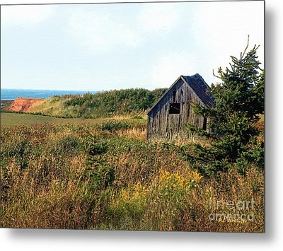 Seaside Shed - September Metal Print by RC DeWinter