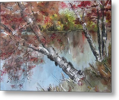 Season Of Change Metal Print by Stephanie Sodel