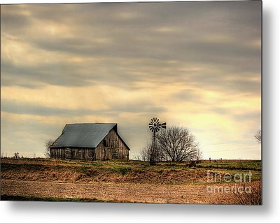 Seasoned Metal Print by Thomas Danilovich