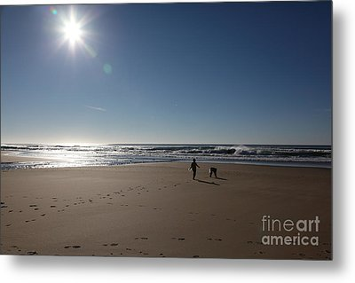 Seasons In The Sun 5d21322 Metal Print by Wingsdomain Art and Photography