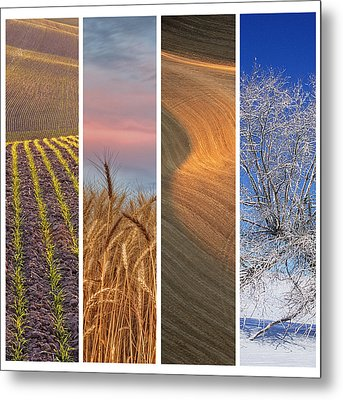 Seasons Of The Palouse Metal Print by Latah Trail Foundation