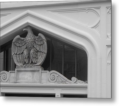 Metal Print featuring the photograph Seated Eagle by Adria Trail