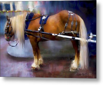Seattle Carriage Horse Metal Print