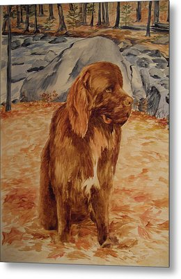 Metal Print featuring the painting Sebastian by Ellen Canfield