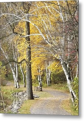 Metal Print featuring the photograph Secluded Lake Road by Bill Woodstock
