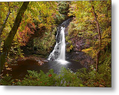 Secluded Waterfall Metal Print by Trever Miller