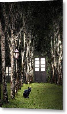 Secret Forest Dwelling Metal Print by Nirdesha Munasinghe