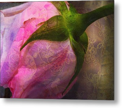 Secret Passion Metal Print by Shirley Sirois
