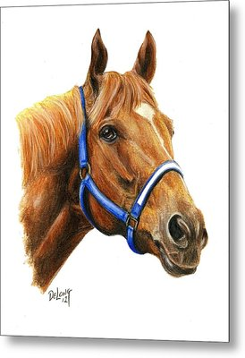 Secretariat With Halter Metal Print