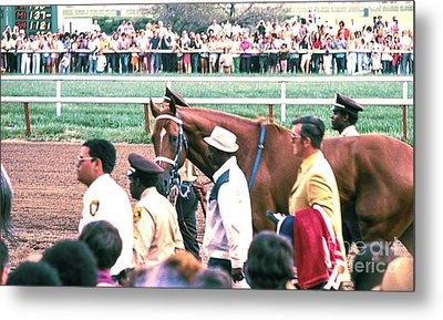 Secretariat Race Horse Looking At Me Before He Won A Big Race At Arlington Race Track In 1973.  Metal Print