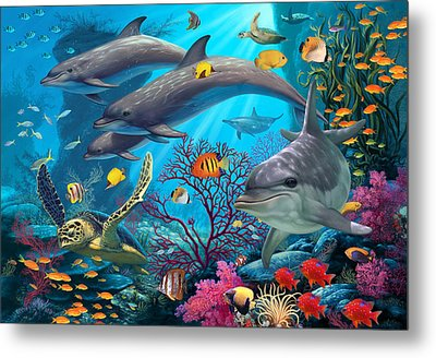 Secrets Of The Reef Metal Print by Steve Read