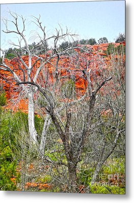 Sedona Arizona Dead Tree Metal Print by Gregory Dyer