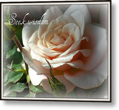 Metal Print featuring the photograph Seek Wisdom Rose by Heidi Manly