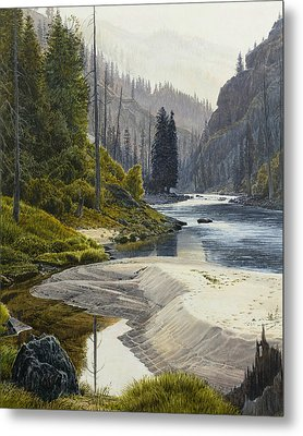 Selway River Metal Print by Steve Spencer