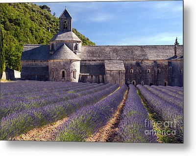 Senanque Abbey Metal Print by Bob Phillips