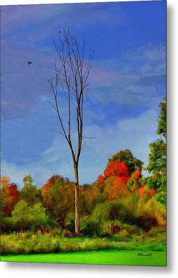 Metal Print featuring the photograph Sentinel Tree by Dennis Lundell