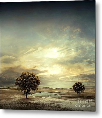 Separating River Metal Print by Franziskus Pfleghart