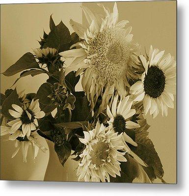 Sepia Garden Sunflower Bouquet Metal Print