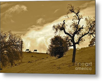 Sepia Of Two Horses Metal Print