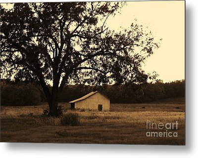 Metal Print featuring the photograph Sepia Simplicity by Julie Clements