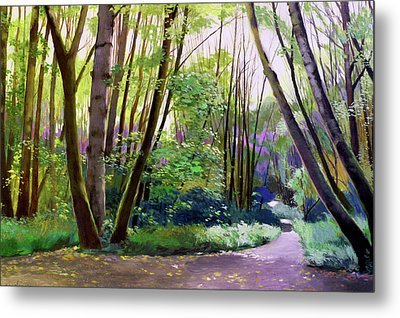 September In Springbrook Park Metal Print by Melody Cleary