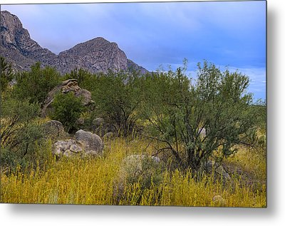 September Oasis No.1 Metal Print by Mark Myhaver