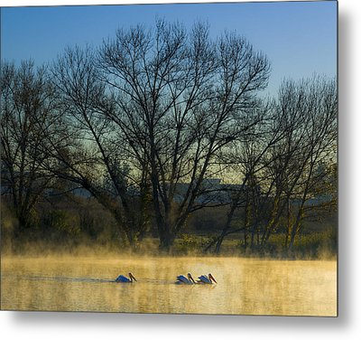 Sepulveda Dam At Dawn On New Year's Day 2015 Metal Print by Joe Doherty