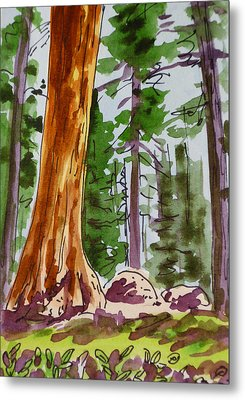 Sequoia Park - California Sketchbook Project  Metal Print by Irina Sztukowski