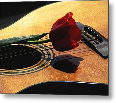 Metal Print featuring the photograph Serenade by Angela Davies