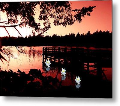 Serene Scene At Lake Ballinger Metal Print by Eddie Eastwood