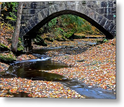 Serene Stream Metal Print by Frozen in Time Fine Art Photography