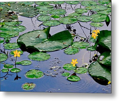 Serene To The Extreme Metal Print by Frozen in Time Fine Art Photography