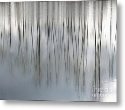 Serenity  Metal Print by Michelle Twohig