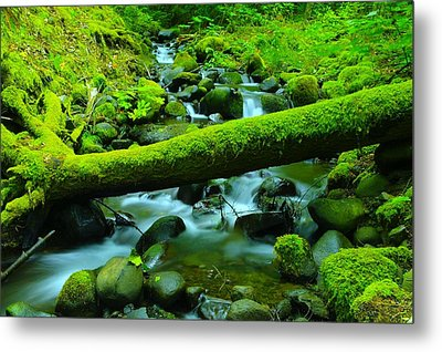 Serenity On The Rocks Metal Print by Jeff Swan