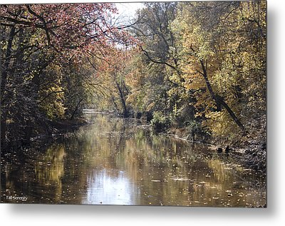 Serenity River Metal Print by Nancy Edwards