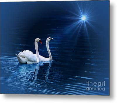Serenity Metal Print by Shirley Mangini
