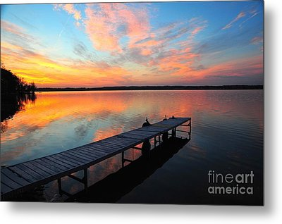 Metal Print featuring the photograph Serenity by Terri Gostola