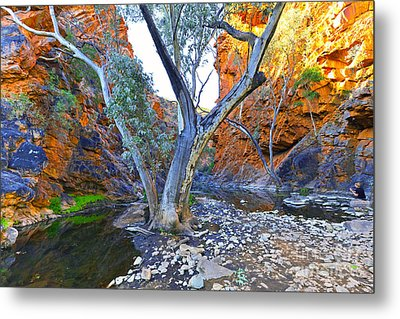 Serpentine Gorge Metal Print