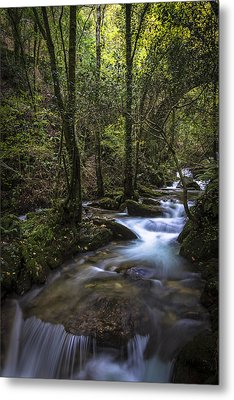 Metal Print featuring the photograph Sesin Stream Near Caaveiro by Pablo Avanzini