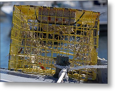 Sesuit Harbor Lobster Cage Metal Print by Juergen Roth