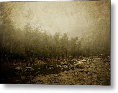 Set In Fog Metal Print by Kathy Jennings