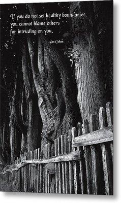 Setting Boundaries Metal Print by Mike Flynn